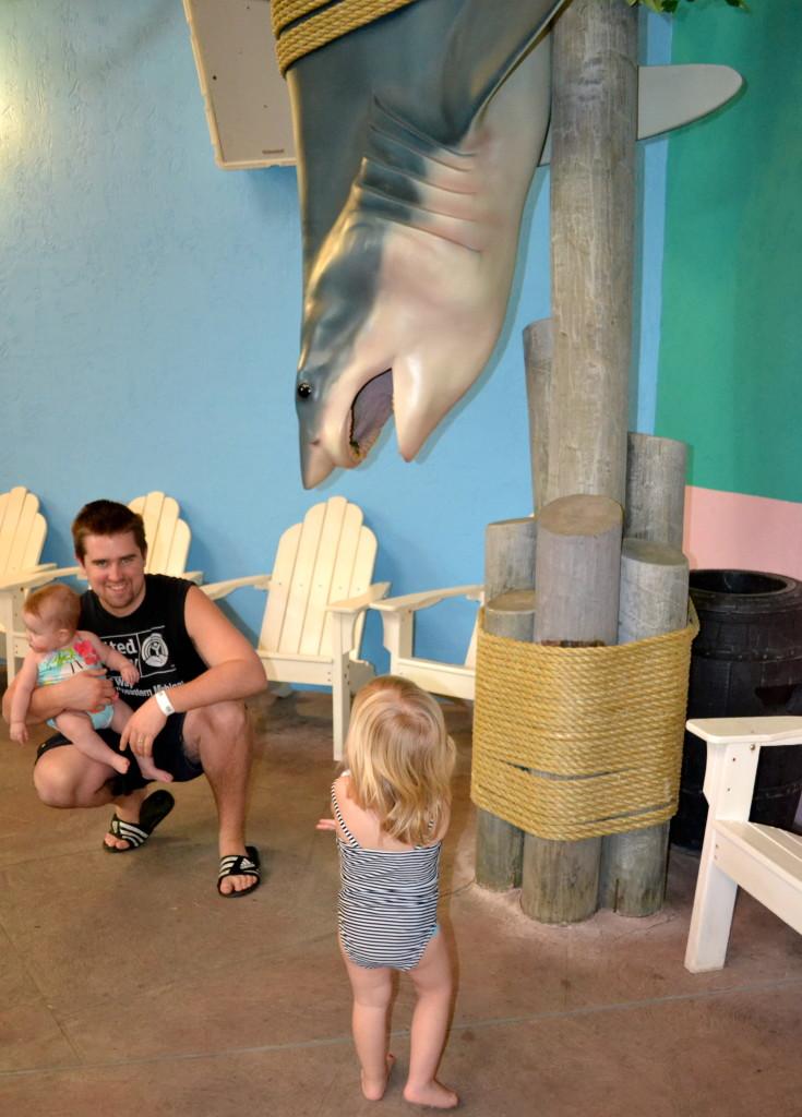 Castaway Bay Shark