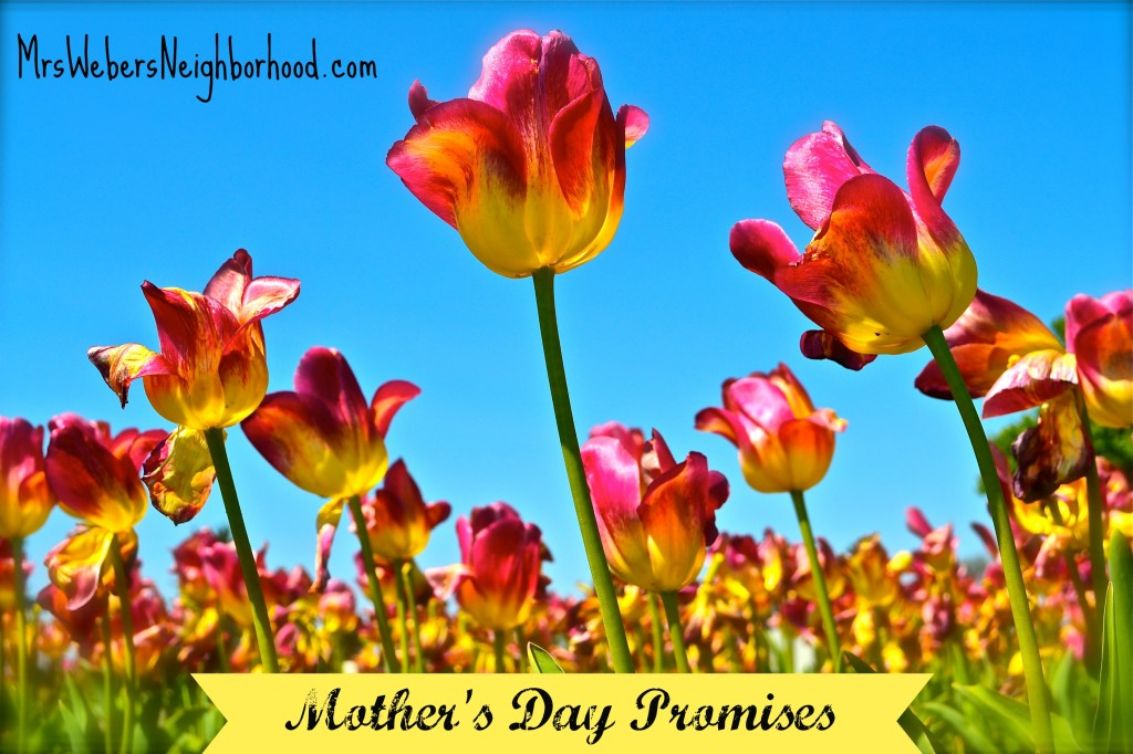 Mother's Day Promises