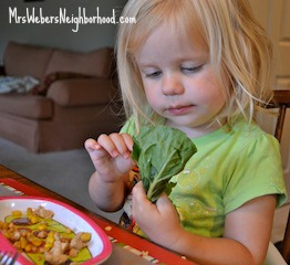 Toddlers love Tofu Lettuce Wraps