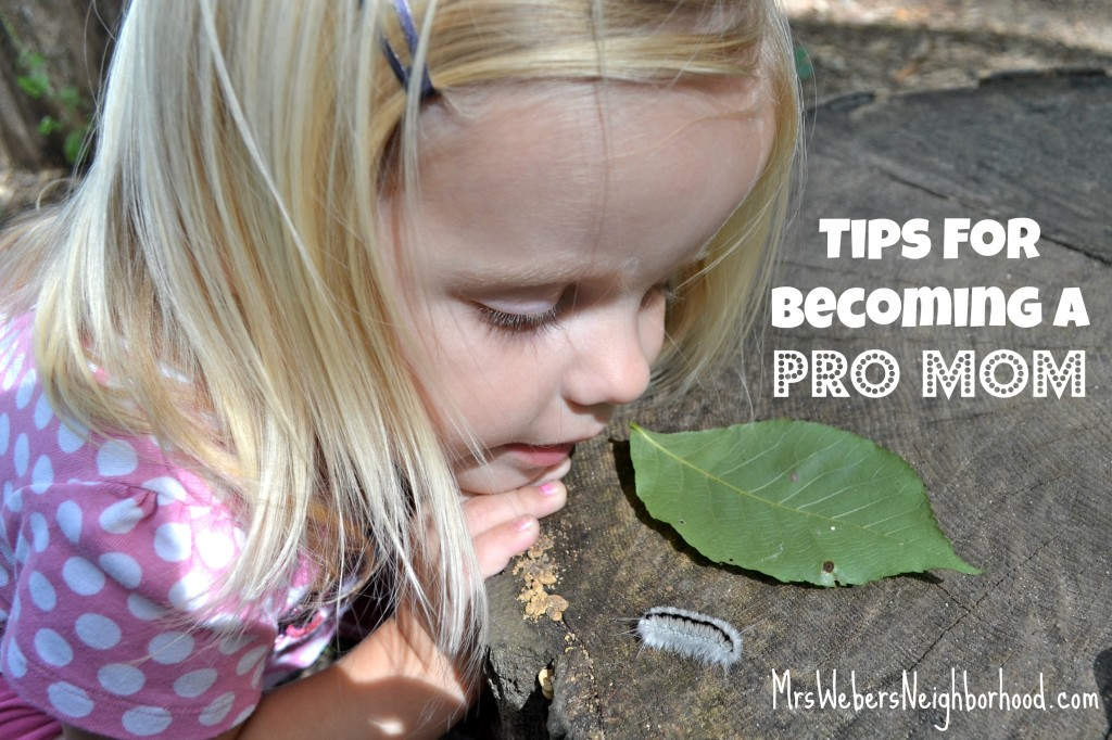 Tips For Becoming A Pro Mom