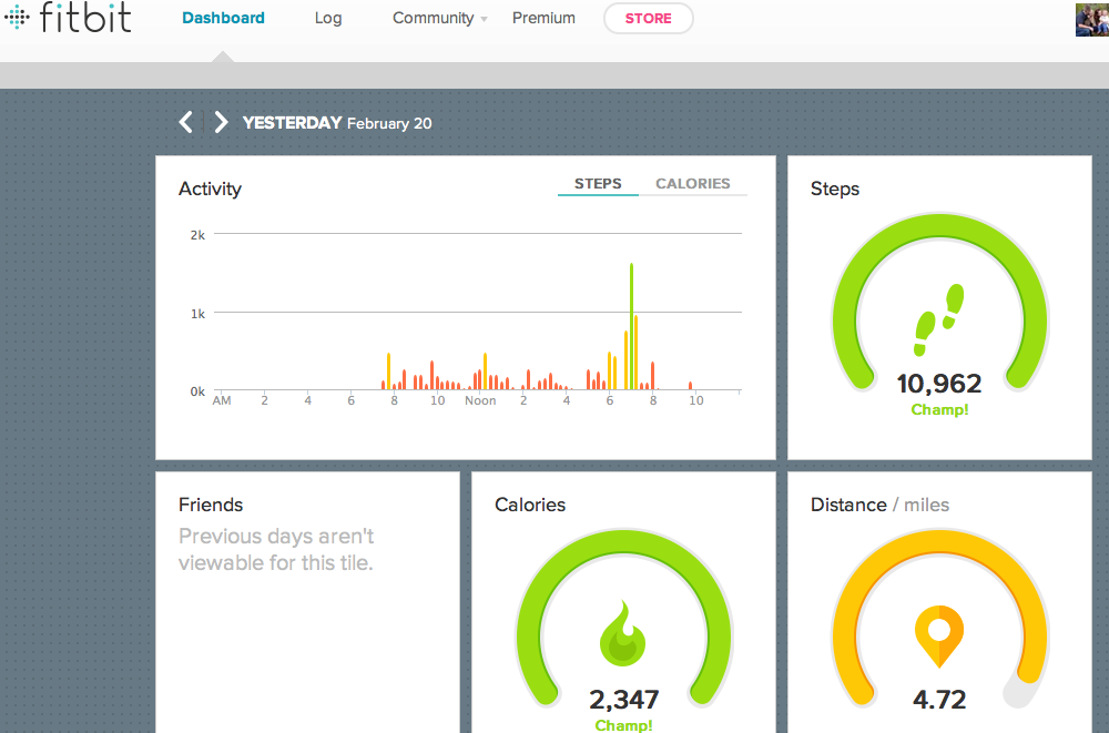 Fitbit Flex Dashboard