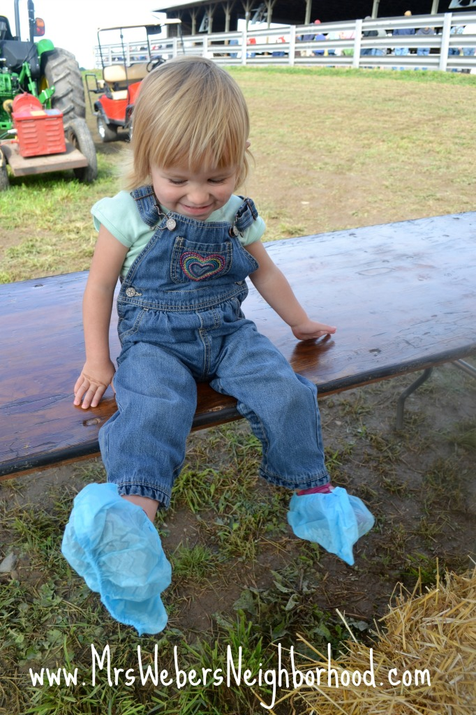 Booties at Breakfast on the Farm