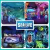 SEA LIFE Michigan Aquarium Renderings