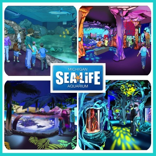 SEA LIFE Michigan Aquarium Renderings