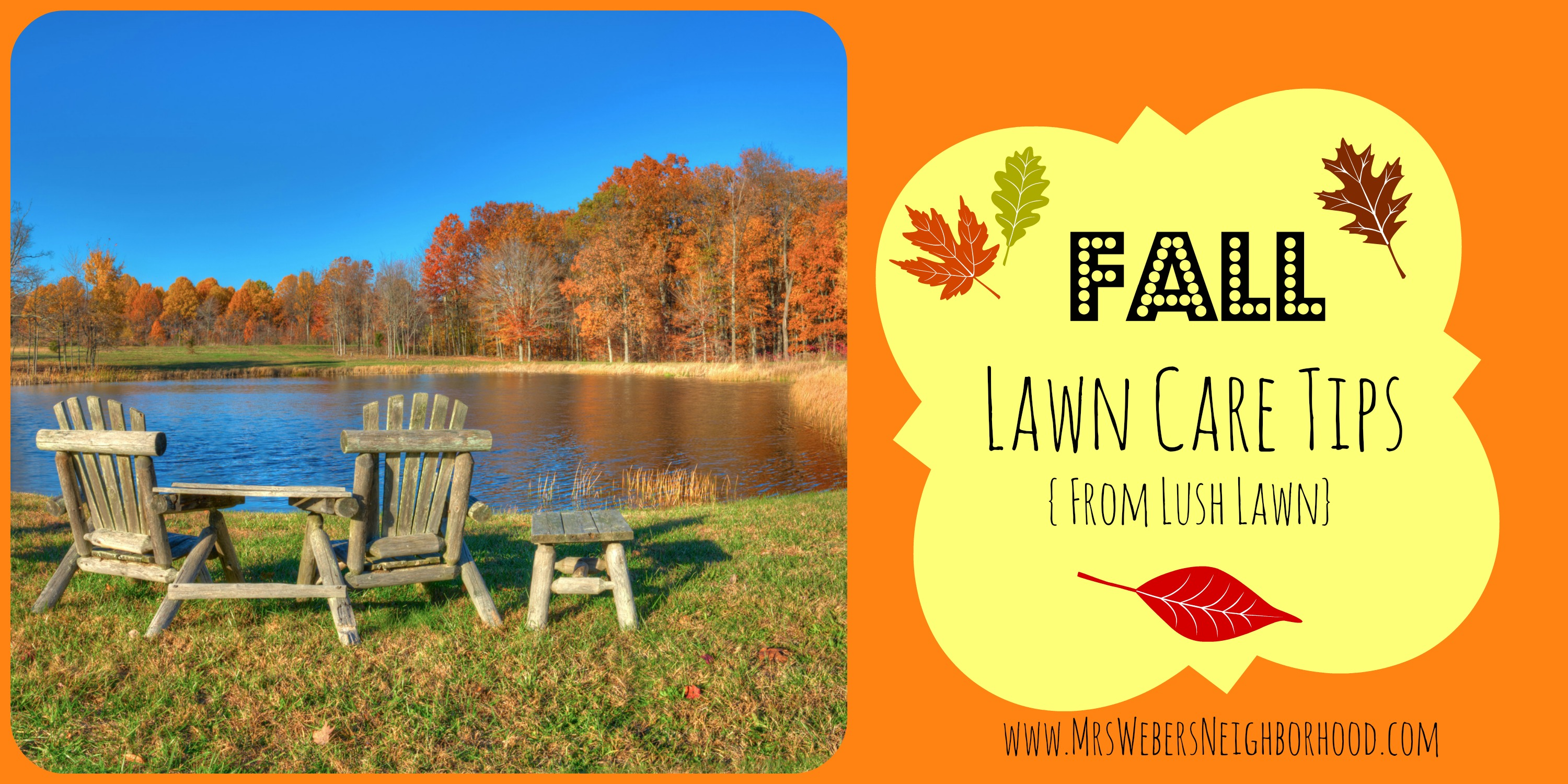 Fall lawn care archives mrs weber 39 s neighborhood - Autumn lawn care advice ...