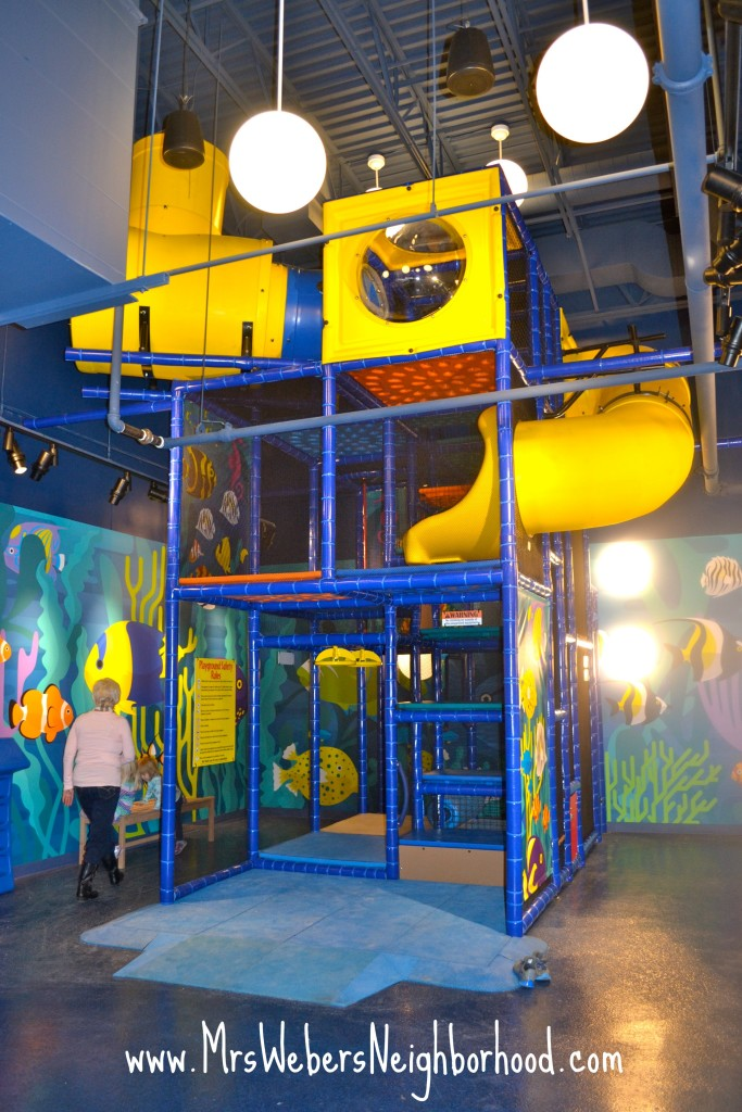 SEA LIFE Michigan Kids Play Area