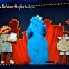 Sesame Street Live - Cookie