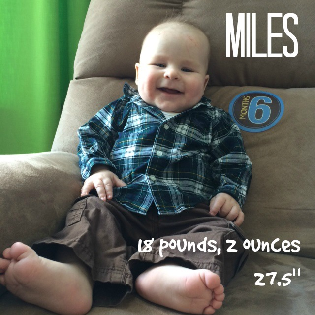 Miles - 6 Months