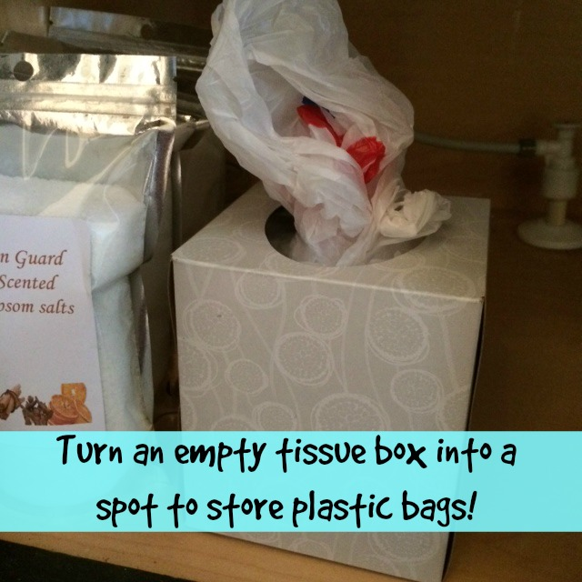Spring Cleaning Bathroom - Plastic Bags Tip