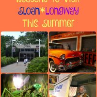 10 Reasons to Visit Sloan*Longway in Flint This Summer