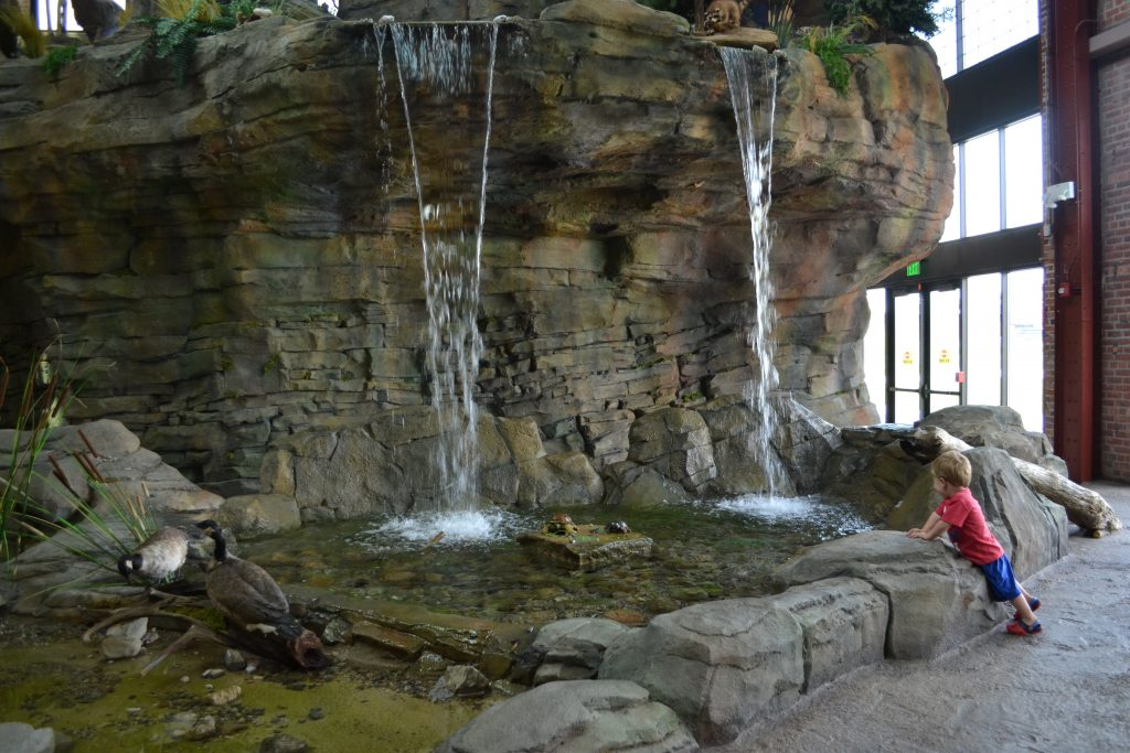 Waterfall inside the DNR Outdoor Adventure Center in Detroit
