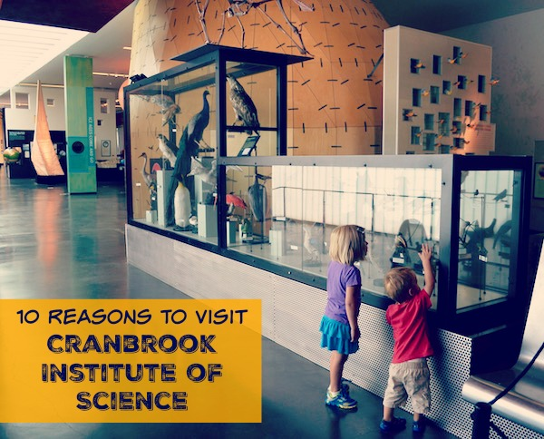 10 Reasons To Visit Cranbrook Institute of Science