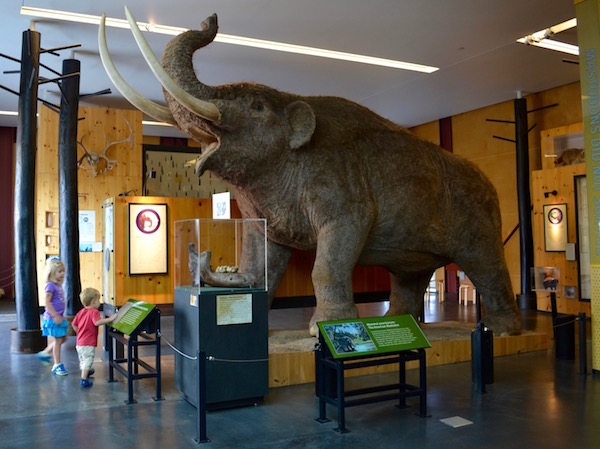 Mastadon at Cranbrook