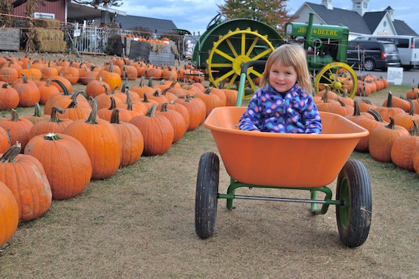 Ideas for Places To Go With Kids In Southeast Michigan In Fall