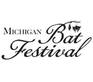 Great Lakes Bat Festival in Detroit