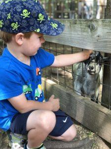 Wilderness Trails Zoo in Birch Run