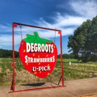 Degroot's Strawberry Farm