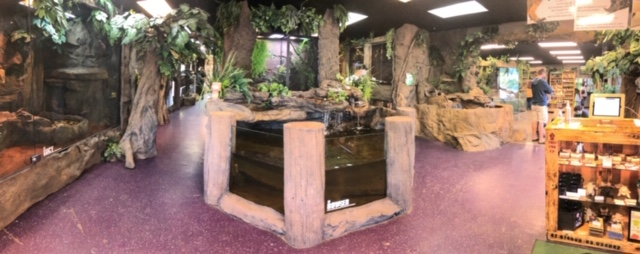 Inside look at The Reptarium in Utica, Michigan