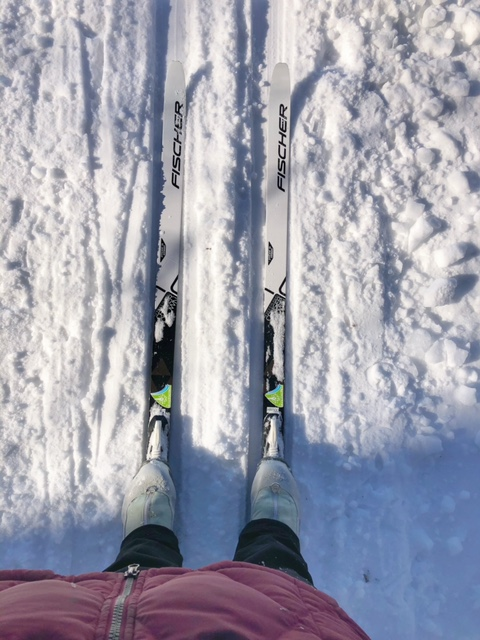 Cross Country Skiing at Huron Meadows Metropark