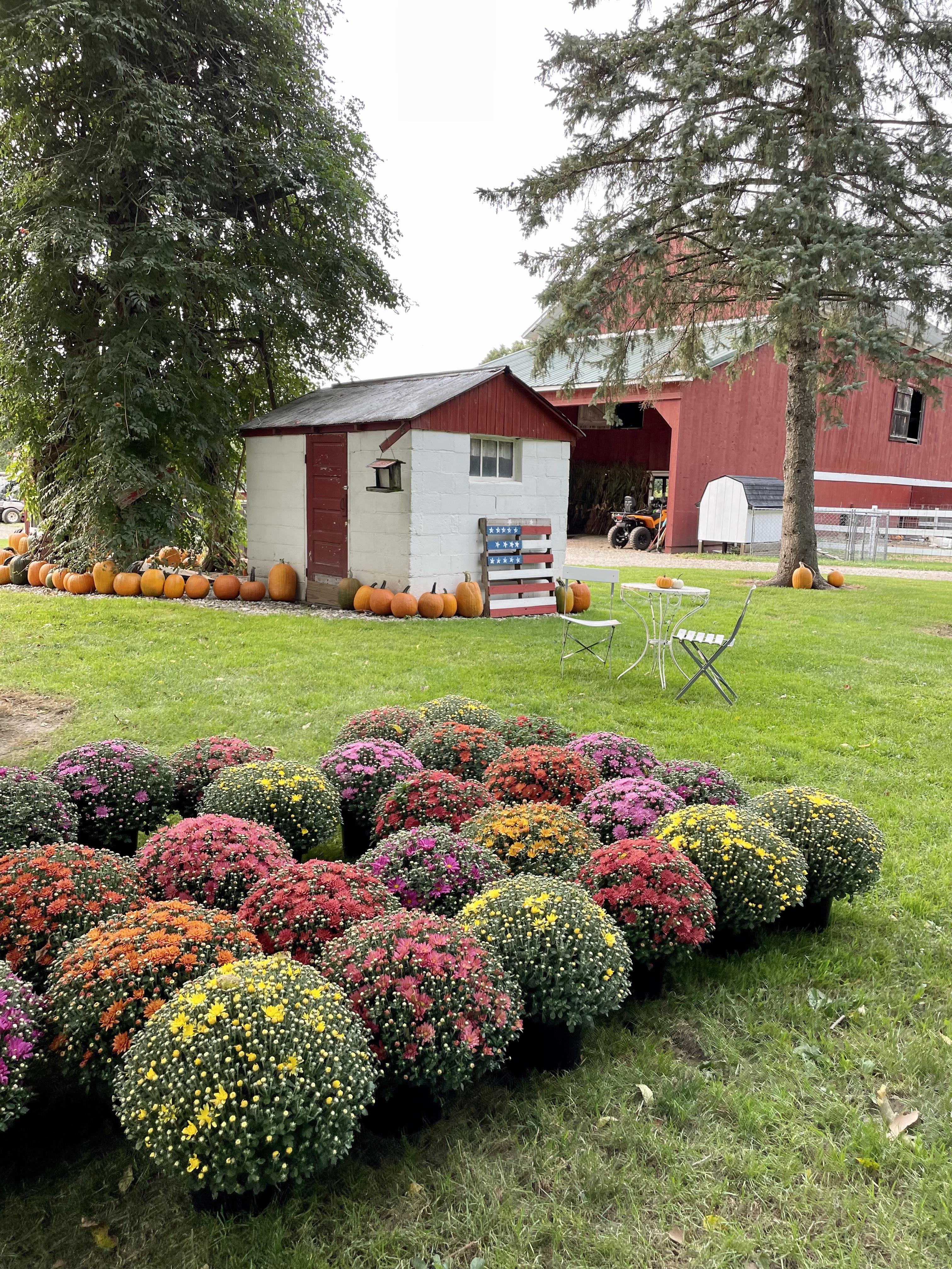 Chambers Farm in Pinckney, Michigan